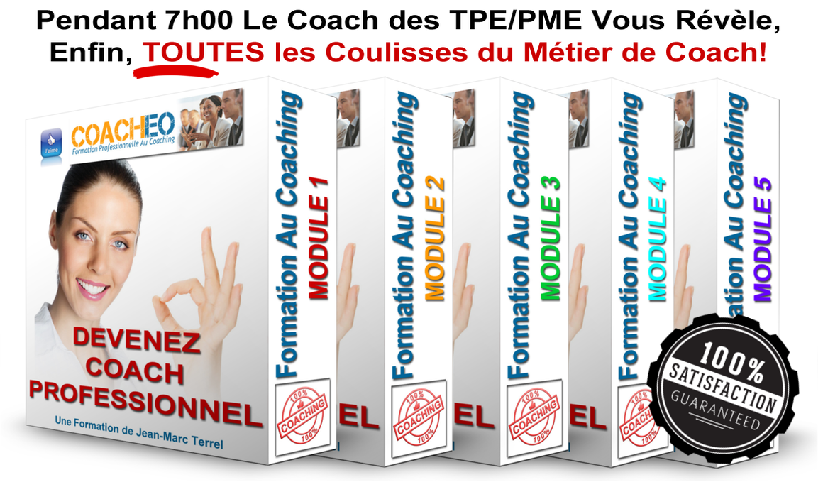 formation au coaching à distance